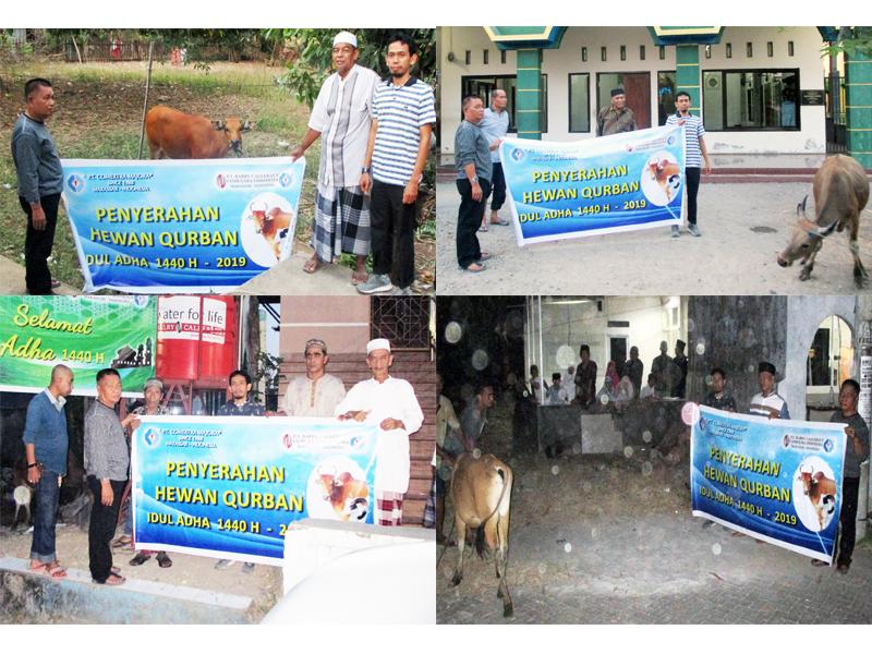 PT Comextra Majora & PT BCCI Donate 4 Cows for Eid Al-Adha Sacrifice